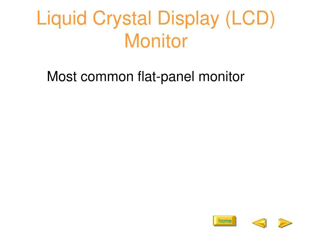Liquid Crystal Display (LCD) Monitor