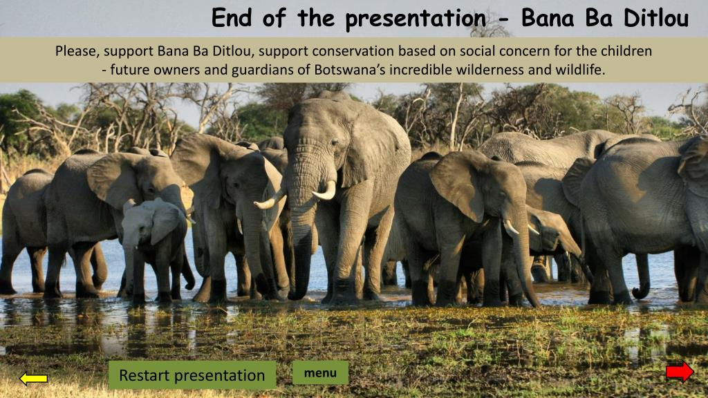 End of the presentation -