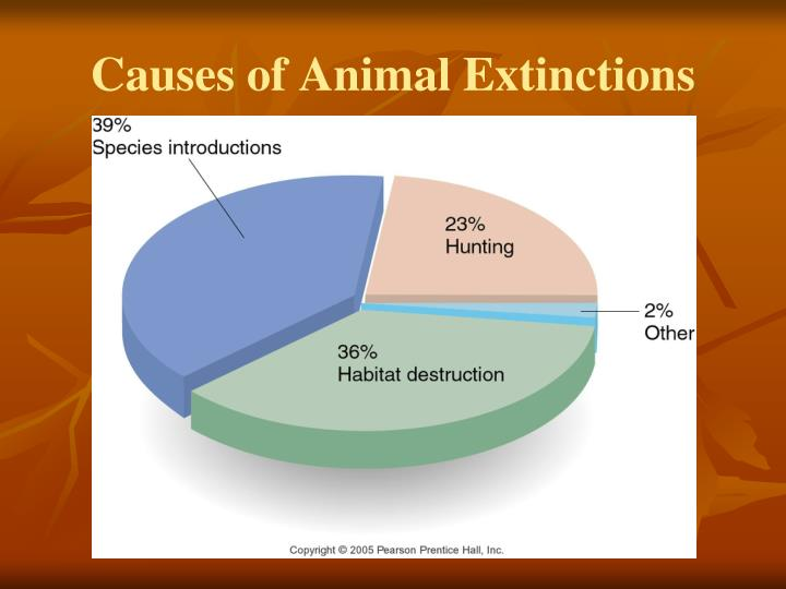 Causes of Animal Extinctions