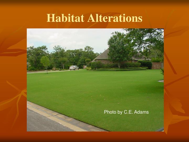 Habitat Alterations