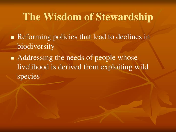 The Wisdom of Stewardship