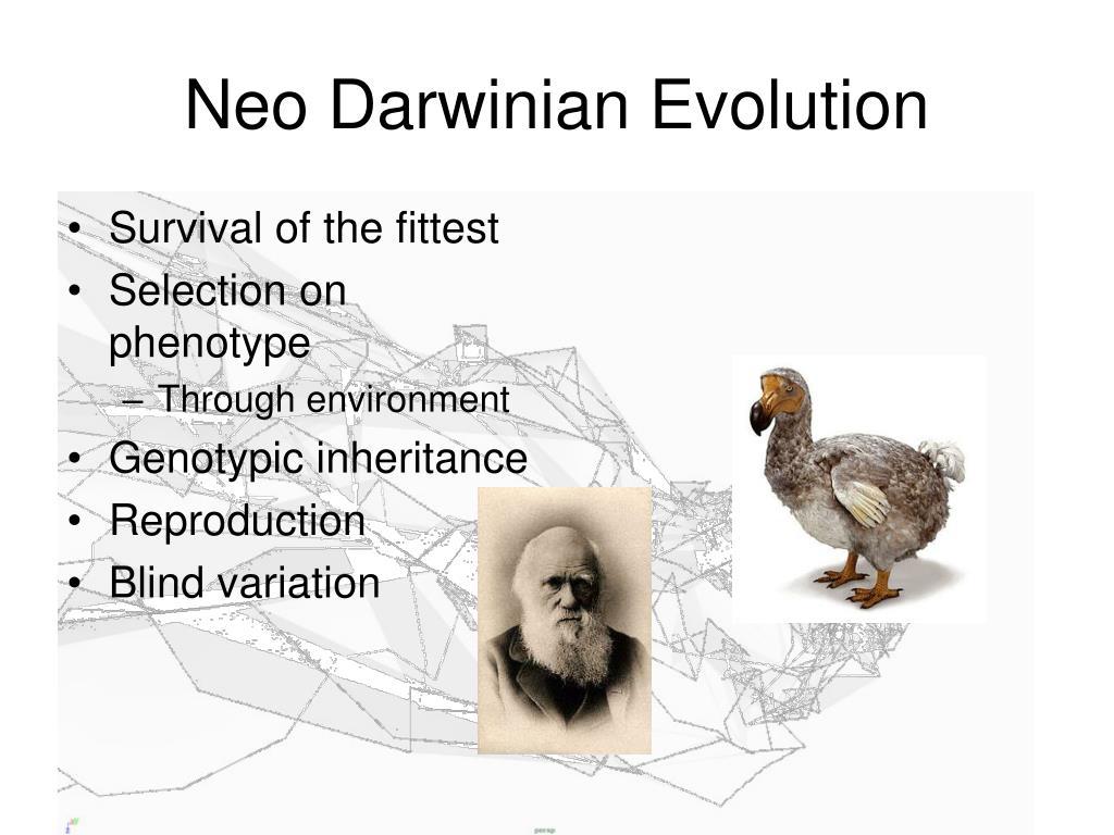 Neo Darwinian Evolution