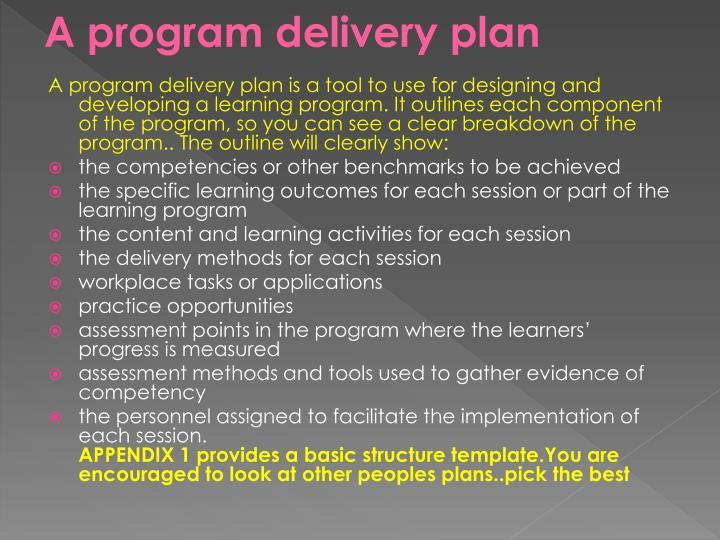 A program delivery plan