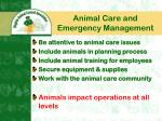 animal care and emergency management