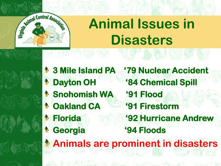 Animal issues in disasters