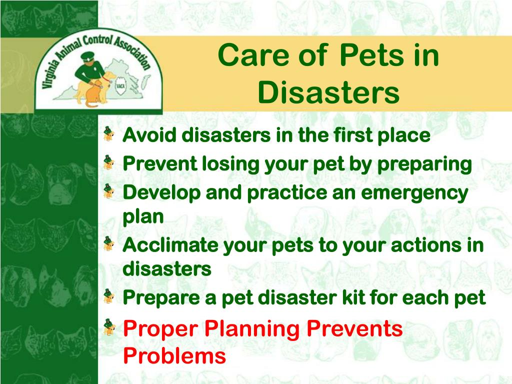 Care of Pets in Disasters