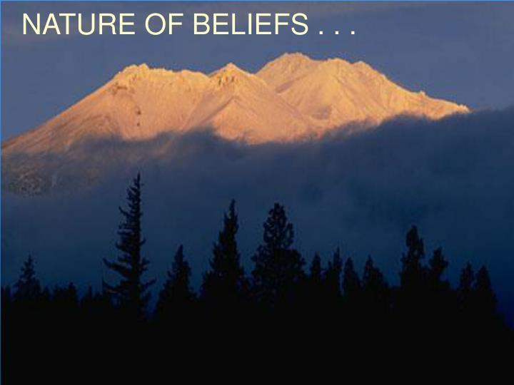 NATURE OF BELIEFS . . .