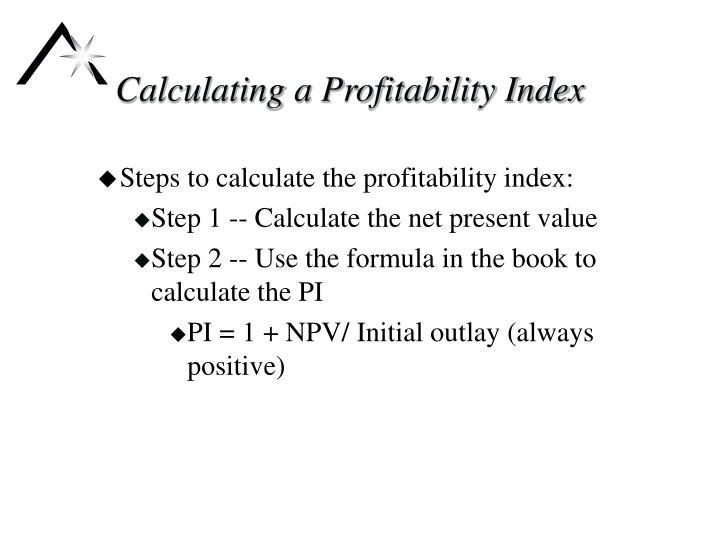 Calculating a Profitability Index