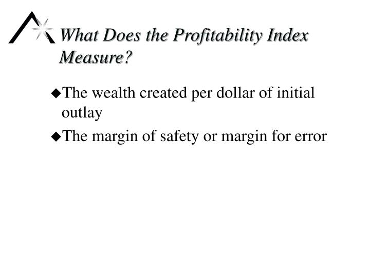 What Does the Profitability Index Measure?