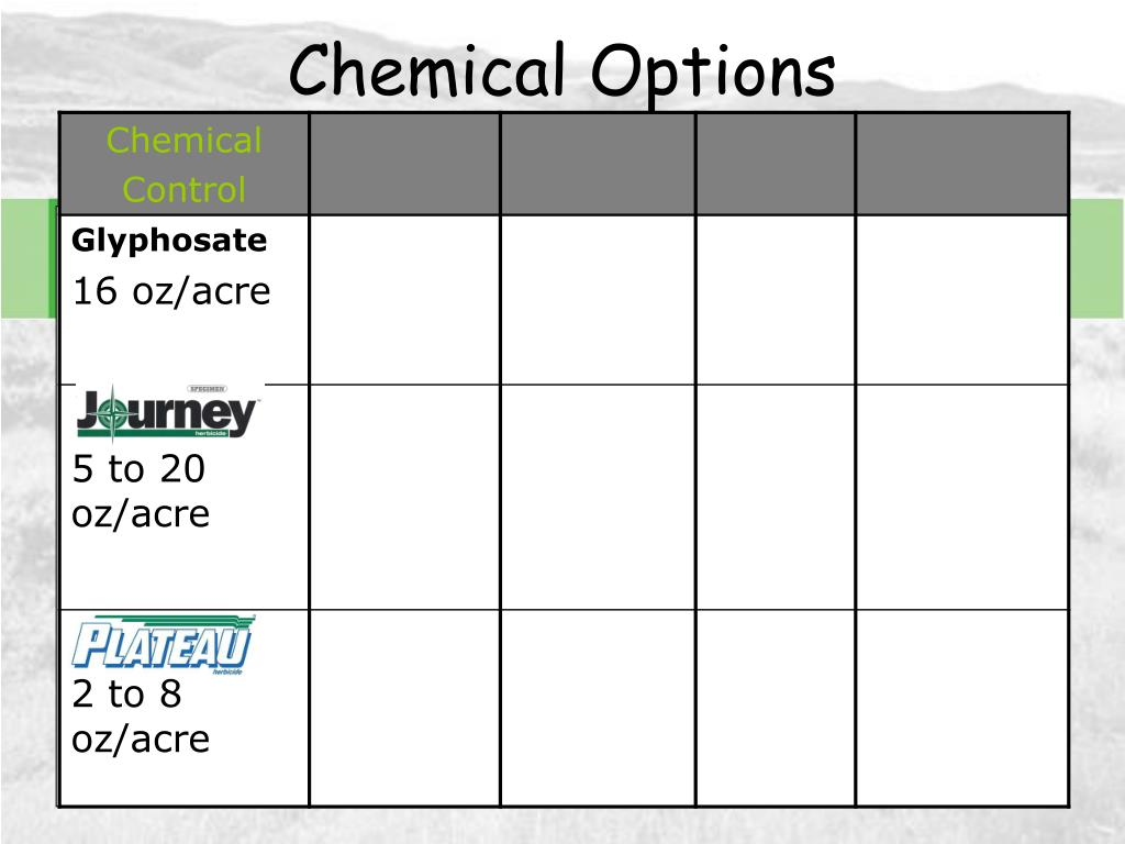 Chemical Options