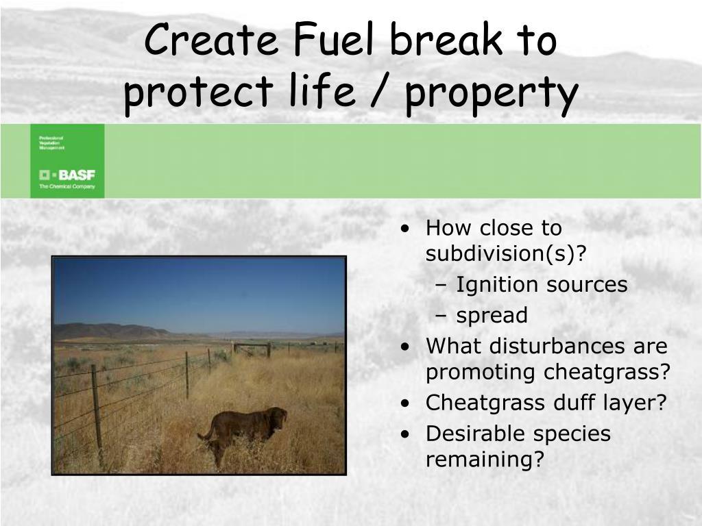 Create Fuel break to