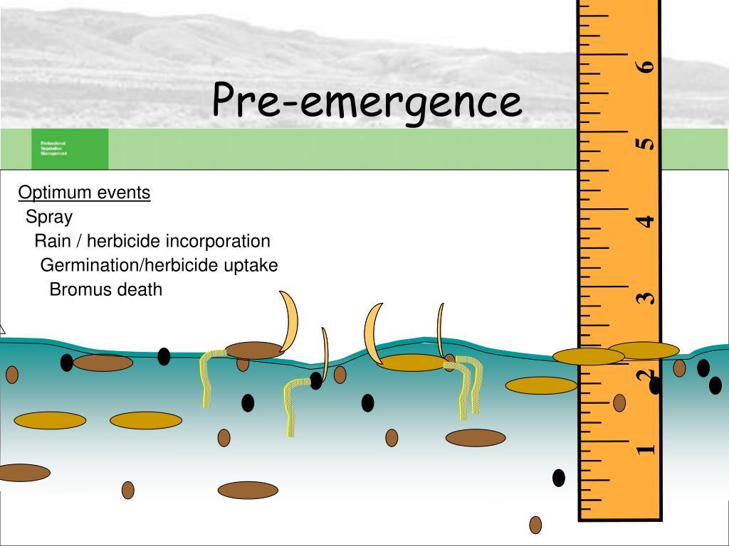 Pre-emergence