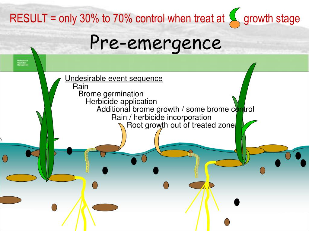 RESULT = only 30% to 70% control when treat at       growth stage