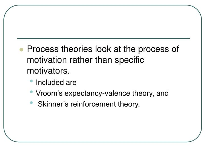 Process theories look at the process of motivation rather than specific motivators.