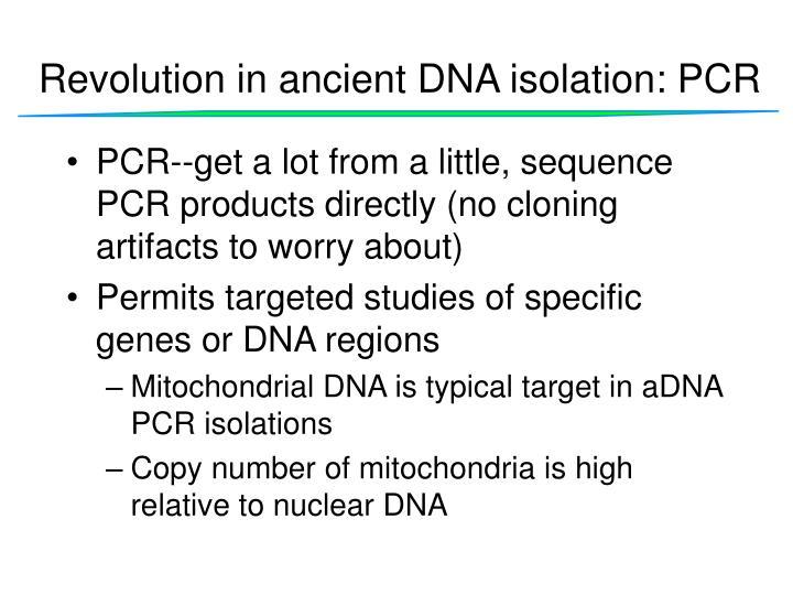 Revolution in ancient DNA isolation: PCR