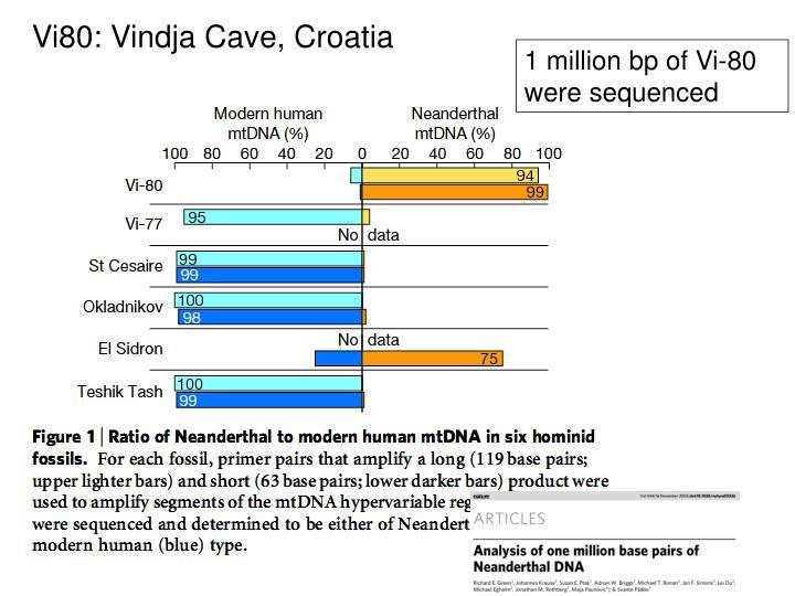 Vi80: Vindja Cave, Croatia