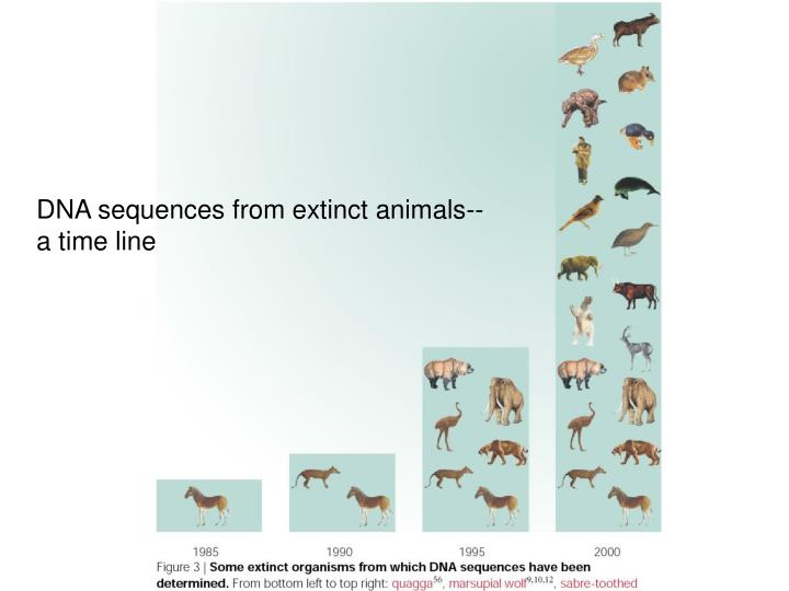 DNA sequences from extinct animals--a time line