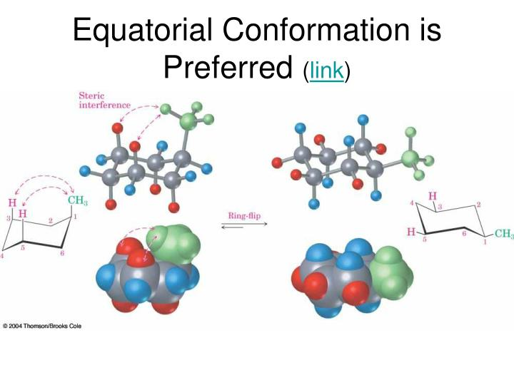 Equatorial Conformation is Preferred
