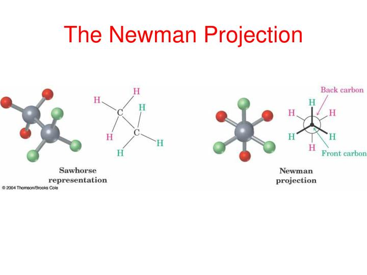 The newman projection