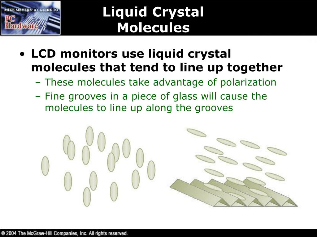 Liquid Crystal Molecules