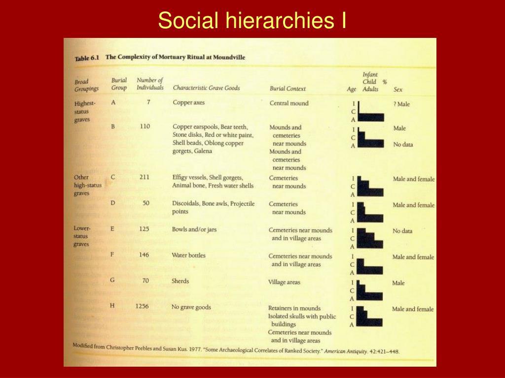 Social hierarchies I