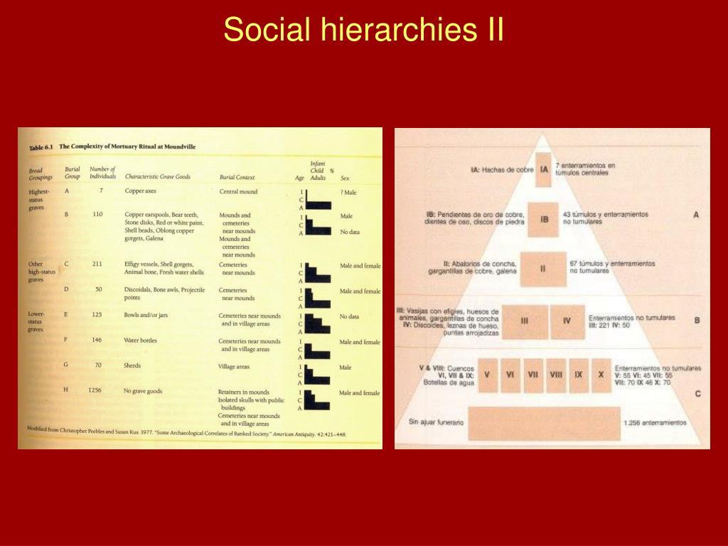 Social hierarchies II