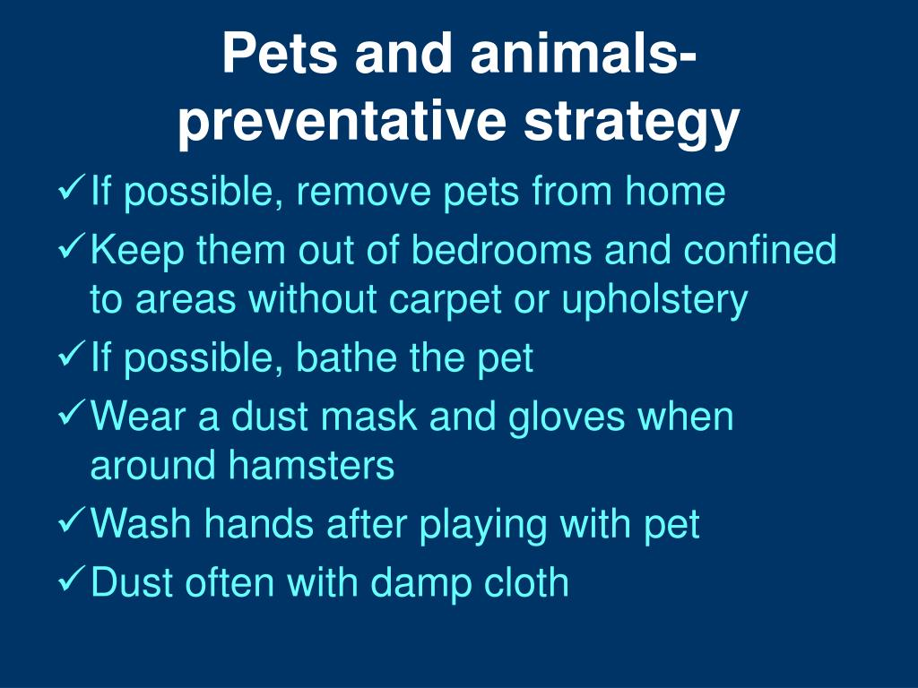Pets and animals-preventative strategy