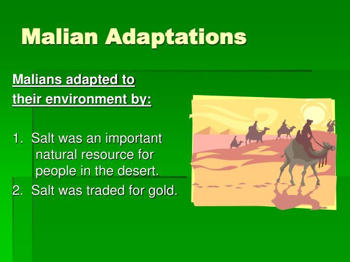 Malian Adaptations