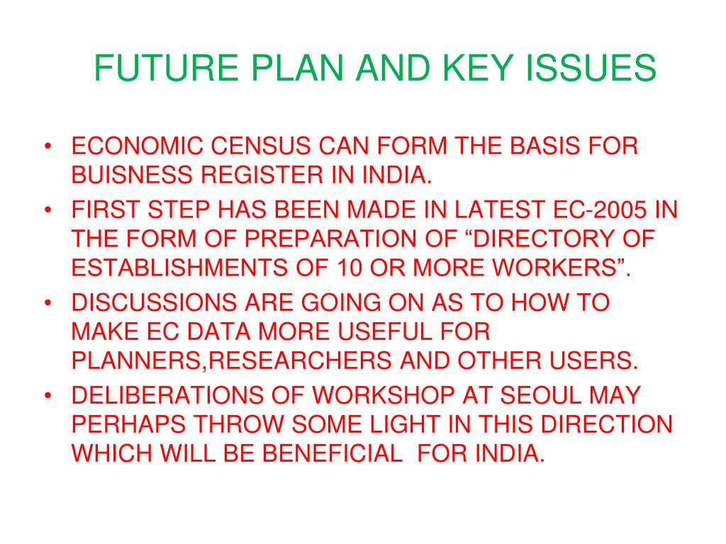 FUTURE PLAN AND KEY ISSUES