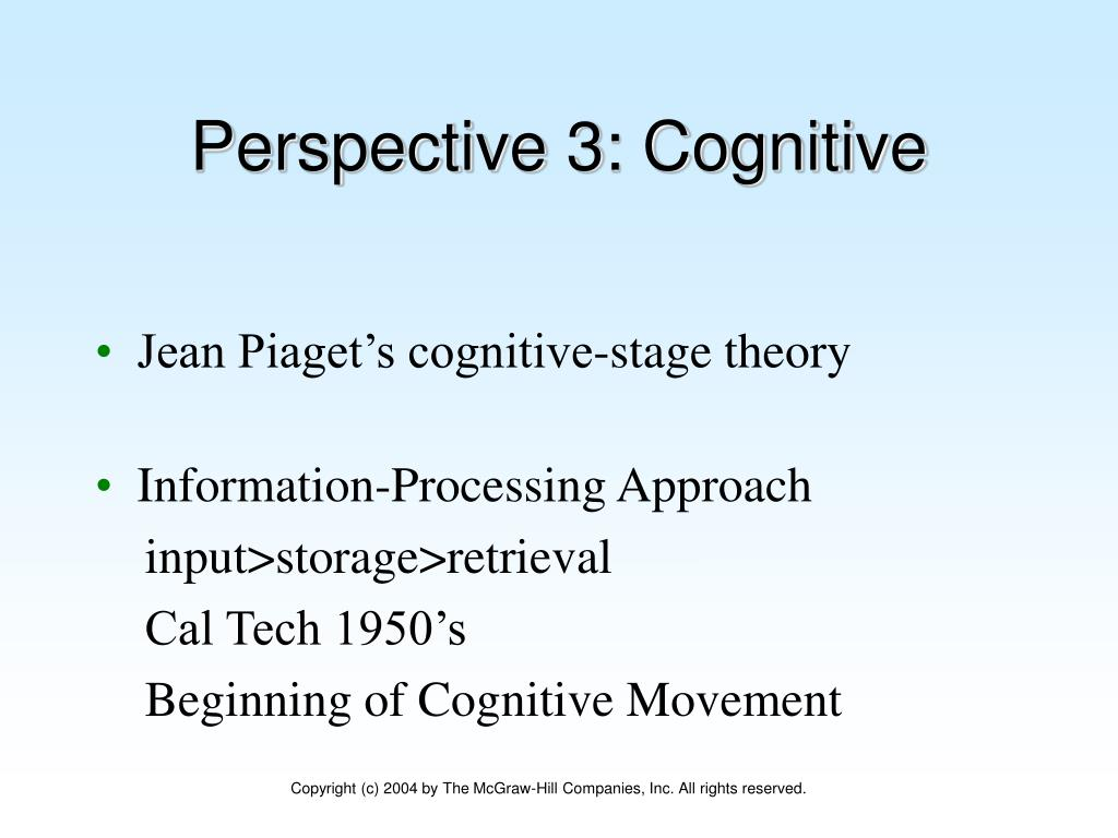 Perspective 3: Cognitive
