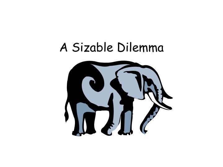 A Sizable Dilemma