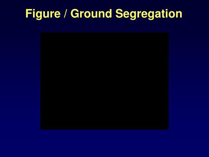Figure / Ground Segregation