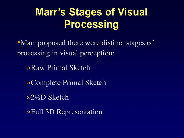 Marr's Stages of Visual Processing