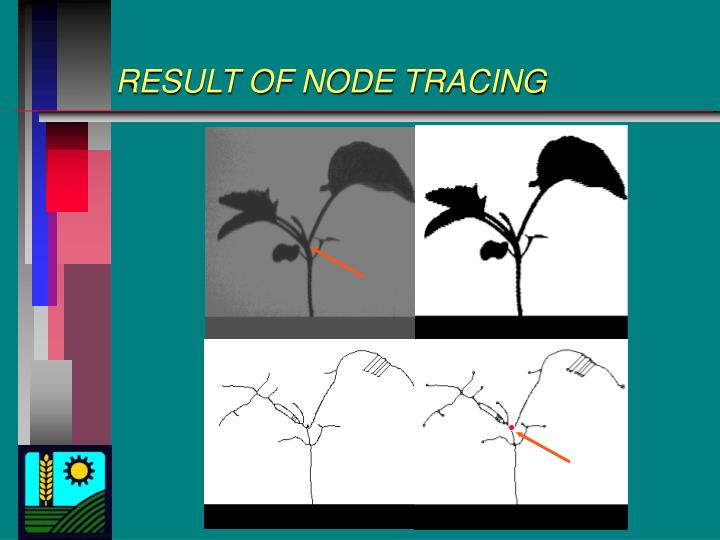 RESULT OF NODE TRACING