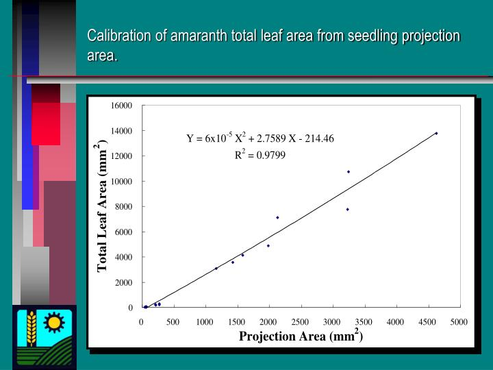 Calibration of amaranth total leaf area from seedling projection area.