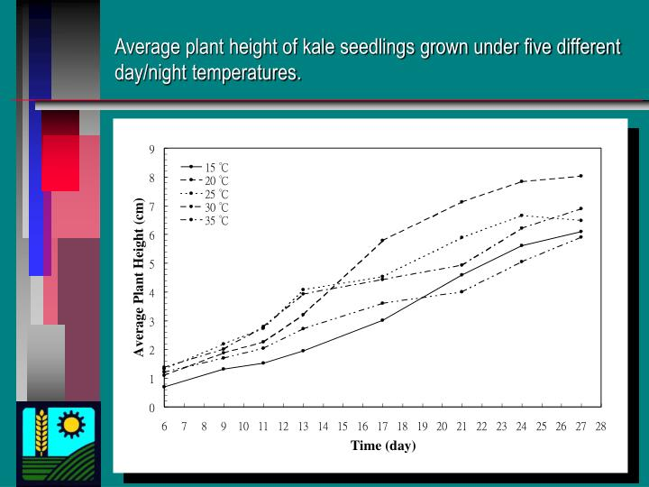 Average plant height of kale seedlings grown under five different day/night temperatures.