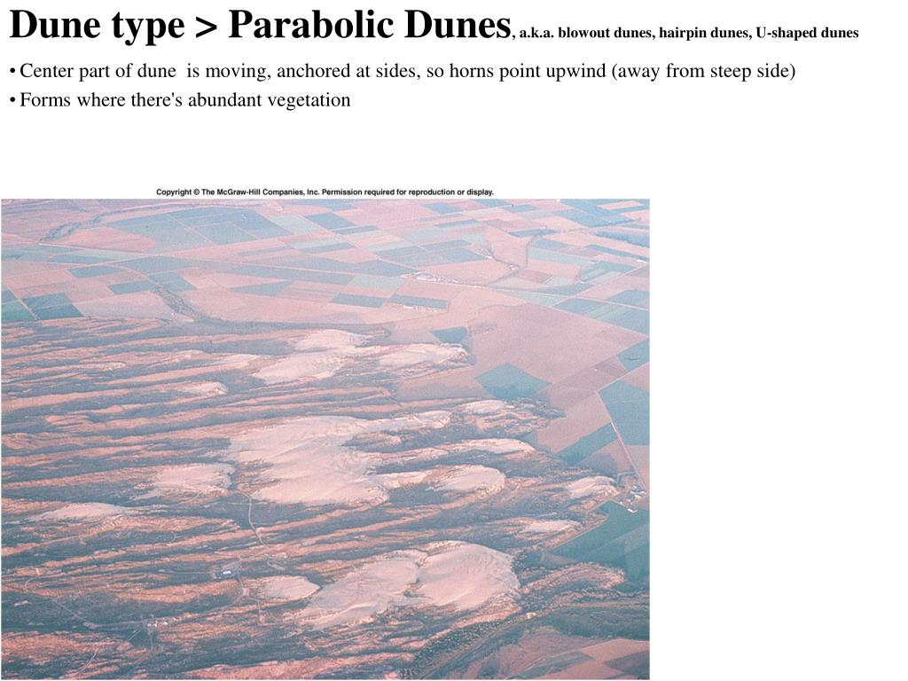 Dune type > Parabolic Dunes