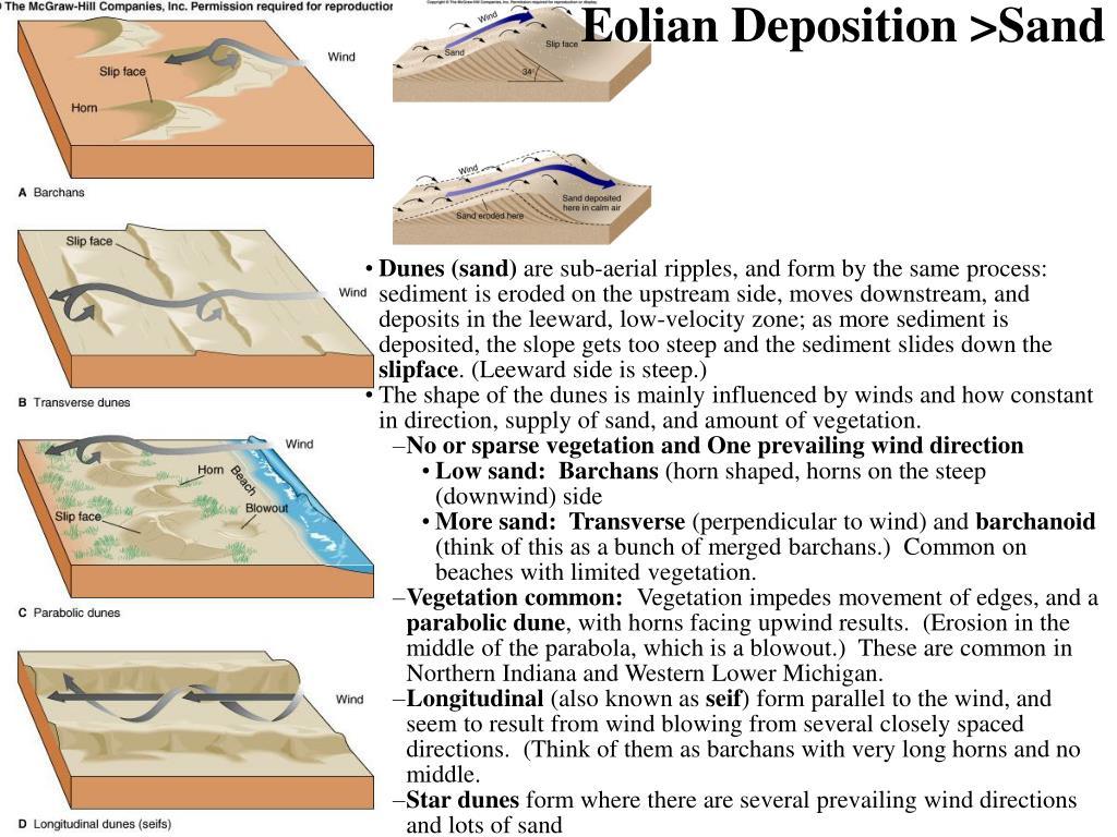 Eolian Deposition >Sand