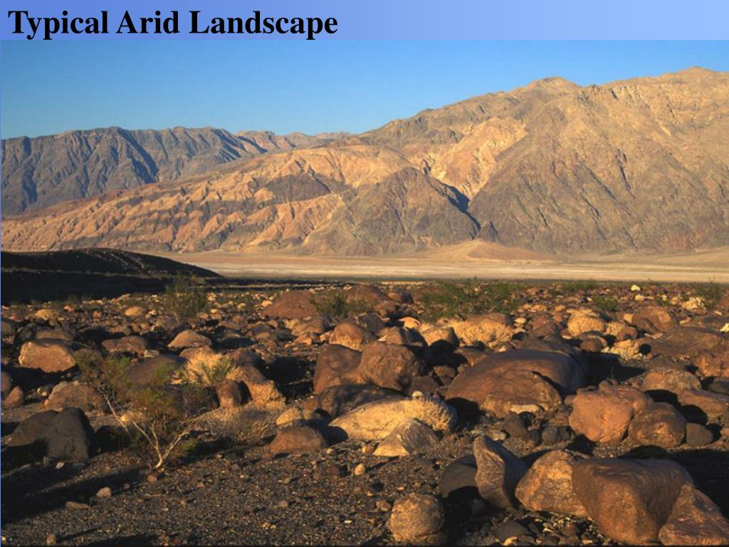 Typical Arid Landscape