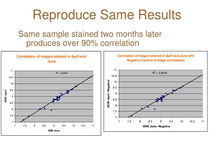 Reproduce Same Results