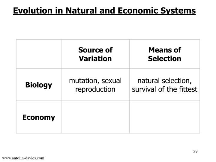 Evolution in Natural and Economic Systems