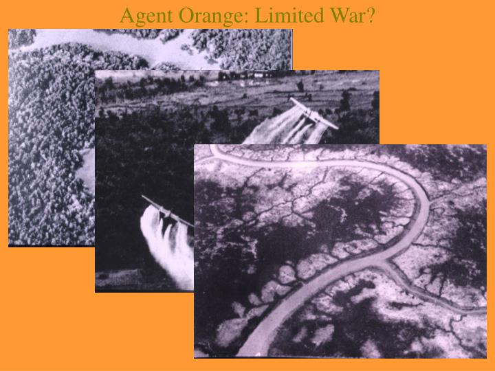 Agent Orange: Limited War?