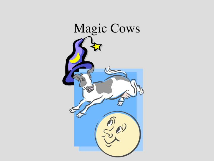 Magic cows