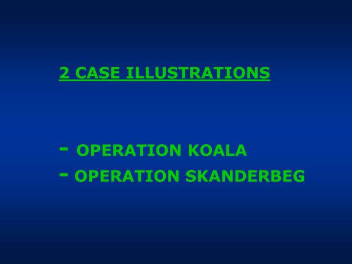 2 CASE ILLUSTRATIONS