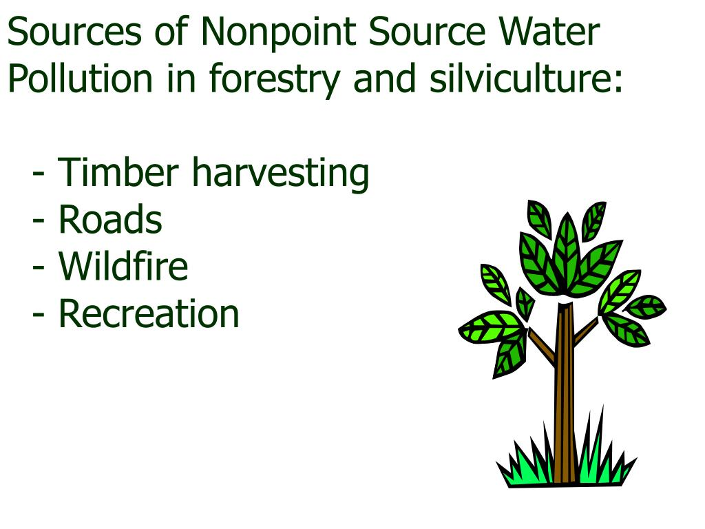 Sources of Nonpoint Source Water Pollution in forestry and silviculture: