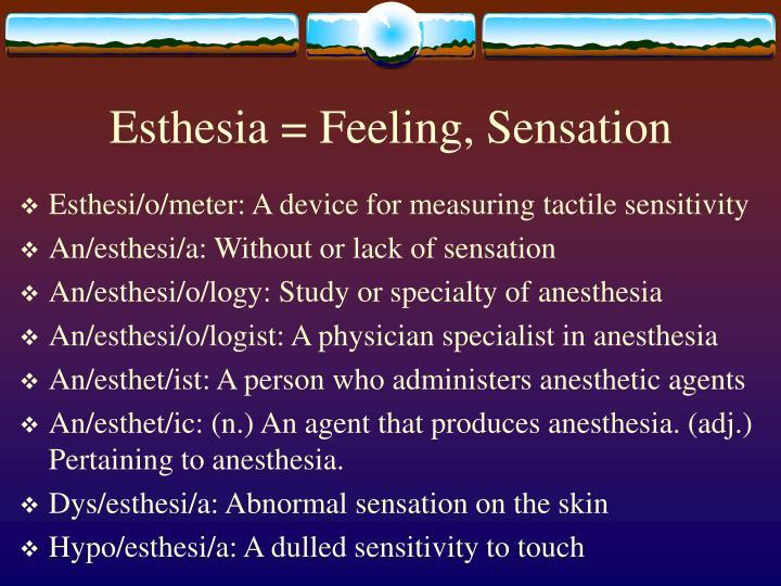 Esthesia = Feeling, Sensation