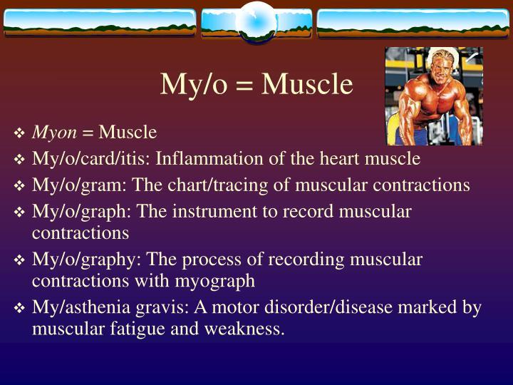 My/o = Muscle