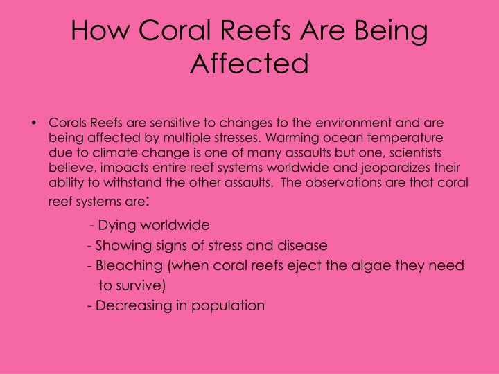 How Coral Reefs Are Being Affected