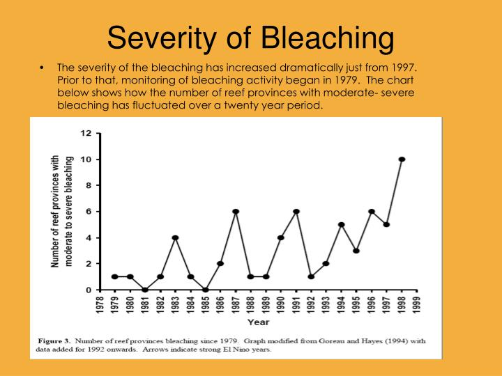 Severity of Bleaching