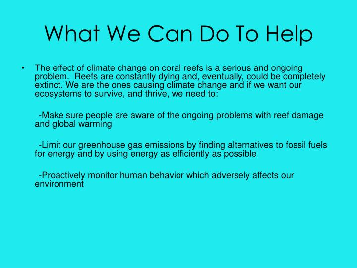 What We Can Do To Help